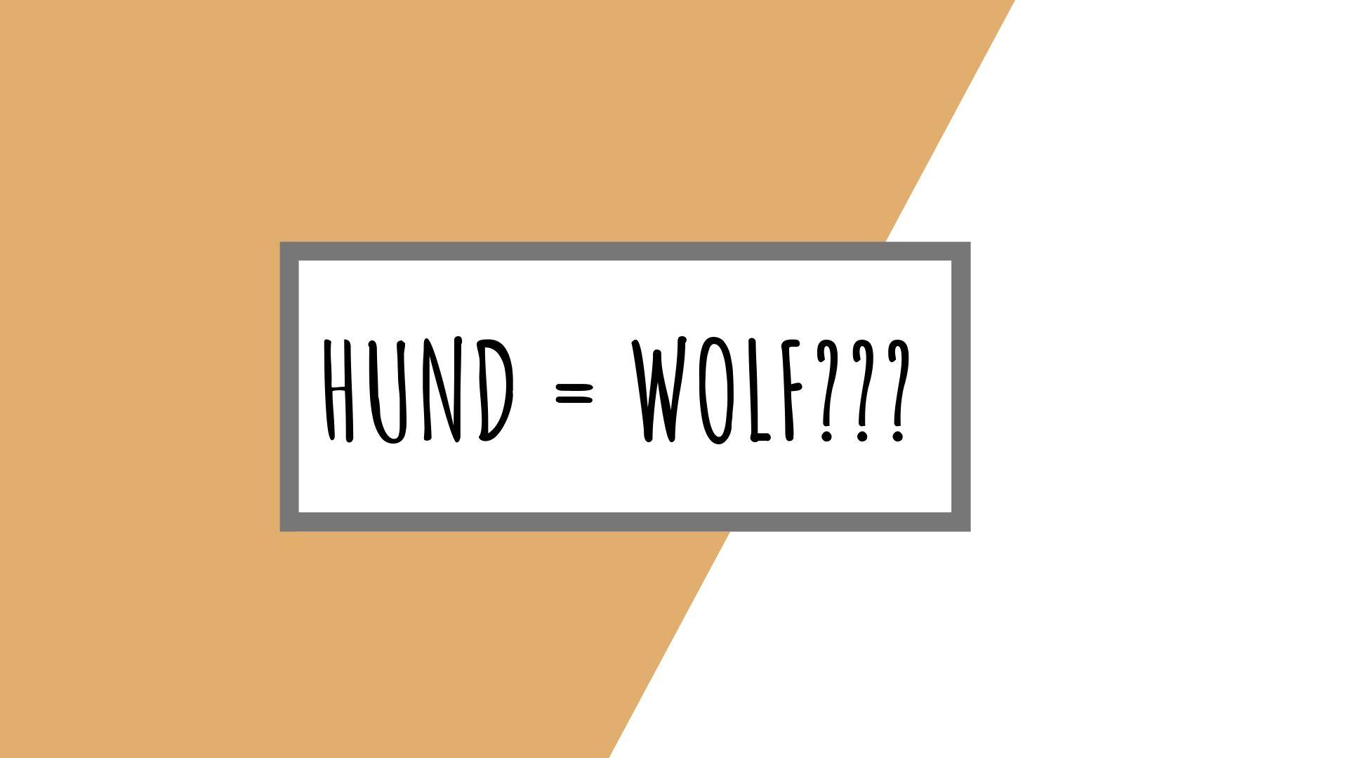 Wie der Wolf zum Hund wurde - Vortrag vom Futtermann