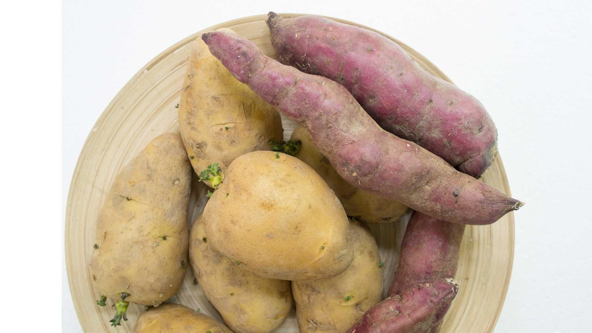 Dürfen Hunde Kartoffeln fressen?